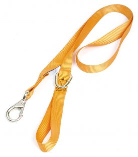 Chain Saw Safety Strap