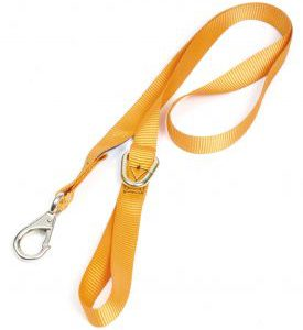 Chain Saw Safety Strap